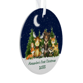 Baby First Christmas Forest Animals - PHOTO BACK Ornament