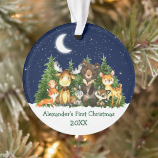Baby First Christmas Watercolor Forest Animals Ornament