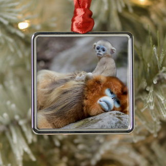 Golden Snub-nosed Monkey Dad with Baby Metal Ornament