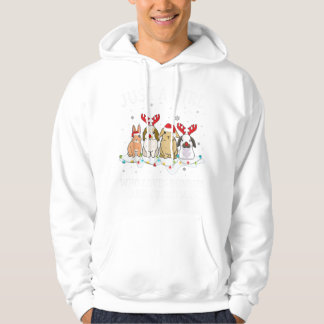 Just a girl who loves bunnies and Christmas Hoodie