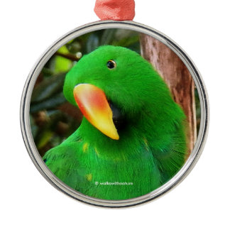 """""""The Green Orator"""" Eclectus Parrot Metal Ornament"""